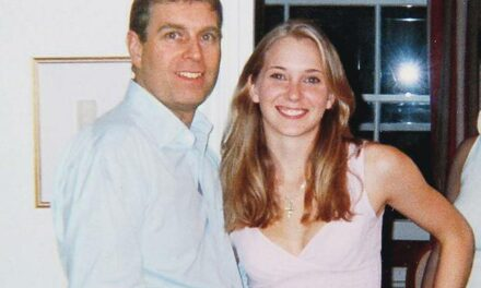 Prince Andrew's role in Jeffrey Epstein pedo scandal is being covered up by FBI, claims ex top cop who says he has hours of damning CCTV footage