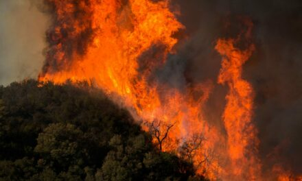 Unprecedented power outages begin in California as winds bring critical fire danger