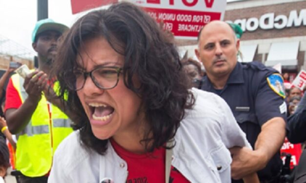 Tlaib frantically asked campaign for personal money, messages show, as ethics probes announced