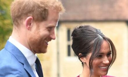 Prince Harry caught touting Meghan Markle to Disney CEO amid news of voiceover deal: WATCH