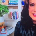 """""""Nasty Michigan Governor Gretchen Whitmer Displays 'Kill Trump' Symbolism in Background During Sunday Interview"""" – TGP"""