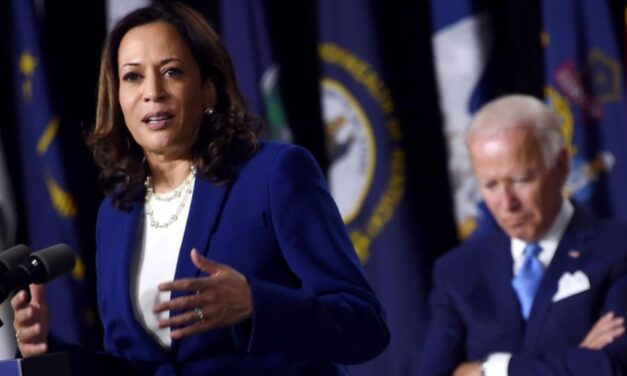 Kamala Harris Is Now Making Joe Biden's Head Of State Calls For Him